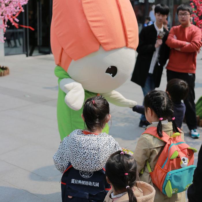 郁金香生活节